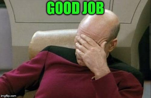 Captain Picard Facepalm Meme | GOOD JOB | image tagged in memes,captain picard facepalm | made w/ Imgflip meme maker