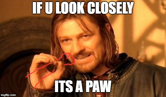 One Does Not Simply Meme | IF U LOOK CLOSELY ITS A PAW | image tagged in memes,one does not simply | made w/ Imgflip meme maker