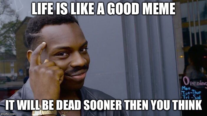 Life is a meme | LIFE IS LIKE A GOOD MEME IT WILL BE DEAD SOONER THEN YOU THINK | image tagged in memes,roll safe think about it | made w/ Imgflip meme maker