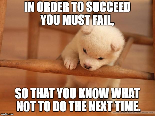 IN ORDER TO SUCCEED YOU MUST FAIL, SO THAT YOU KNOW WHAT NOT TO DO THE NEXT TIME. | image tagged in cute puppy fail | made w/ Imgflip meme maker