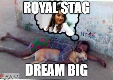 ROYAL STAG DREAM BIG | image tagged in dream big | made w/ Imgflip meme maker