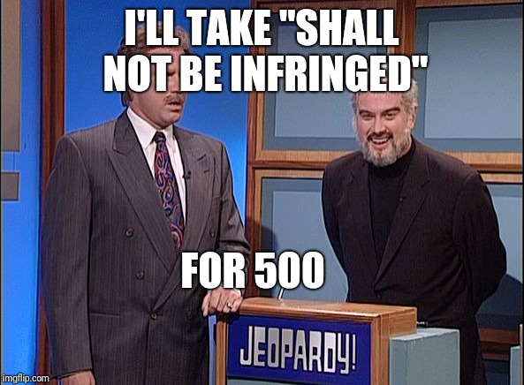 "Shall Not Be Infringed | I'LL TAKE ""SHALL NOT BE INFRINGED"" FOR 500 