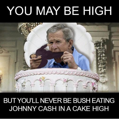 bush Is gay president