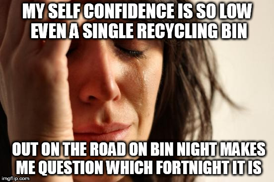 Who even am I? | MY SELF CONFIDENCE IS SO LOW EVEN A SINGLE RECYCLING BIN OUT ON THE ROAD ON BIN NIGHT MAKES ME QUESTION WHICH FORTNIGHT IT IS | image tagged in memes,first world problems,rubbish,fortnightly collection,city council,confidence | made w/ Imgflip meme maker