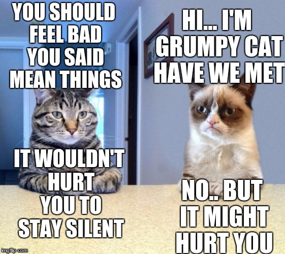 Take a seat cat and grumpy cat review | YOU SHOULD FEEL BAD YOU SAID MEAN THINGS NO.. BUT IT MIGHT HURT YOU HI... I'M GRUMPY CAT HAVE WE MET IT WOULDN'T HURT YOU TO STAY SILENT | image tagged in take a seat cat and grumpy cat review | made w/ Imgflip meme maker