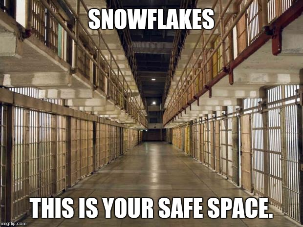 Prison | SNOWFLAKES THIS IS YOUR SAFE SPACE. | image tagged in prison | made w/ Imgflip meme maker