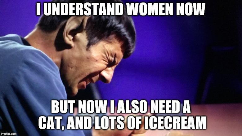 I UNDERSTAND WOMEN NOW BUT NOW I ALSO NEED A CAT, AND LOTS OF ICECREAM | made w/ Imgflip meme maker