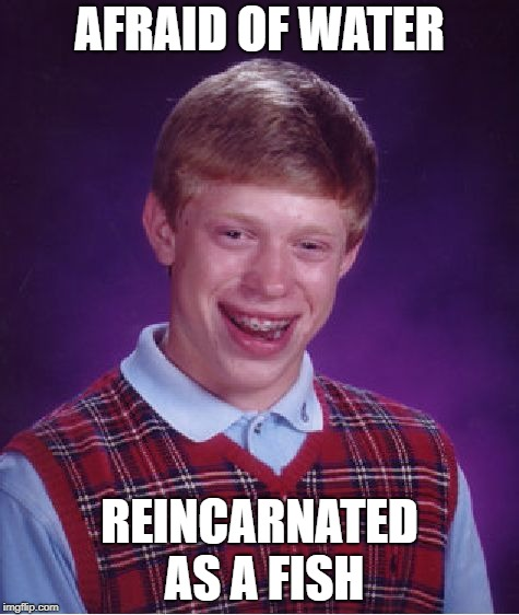 Bad Luck Brian Meme | AFRAID OF WATER REINCARNATED AS A FISH | image tagged in memes,bad luck brian | made w/ Imgflip meme maker