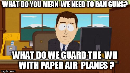 ban guns? | WHAT DO YOU MEAN  WE NEED TO BAN GUNS? WHAT DO WE GUARD THE  WH  WITH PAPER AIR  PLANES ? | image tagged in memes,aaaaand its gone,paper air planes,ban guns,mean,what | made w/ Imgflip meme maker