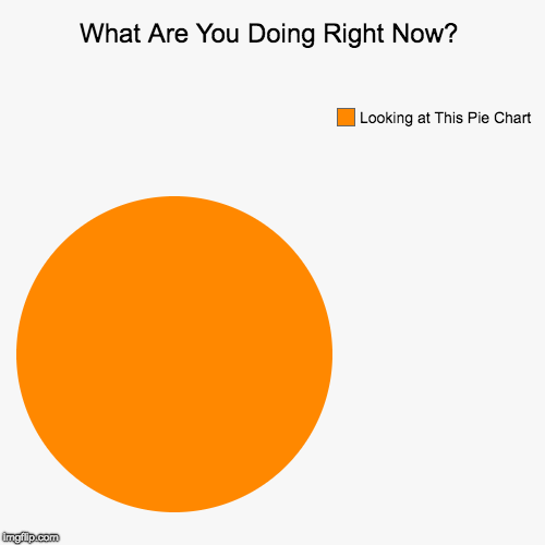 What Are You Doing Right Now? | Looking at This Pie Chart | image tagged in funny,pie charts | made w/ Imgflip pie chart maker