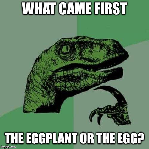 Philosoraptor Meme | WHAT CAME FIRST THE EGGPLANT OR THE EGG? | image tagged in memes,philosoraptor | made w/ Imgflip meme maker