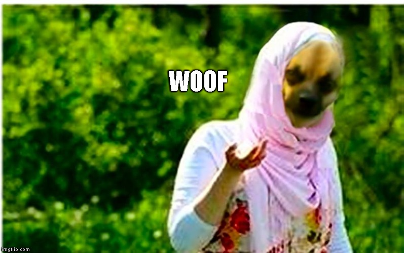 Arabey Dinkey | WOOF | image tagged in arabey dinkey | made w/ Imgflip meme maker