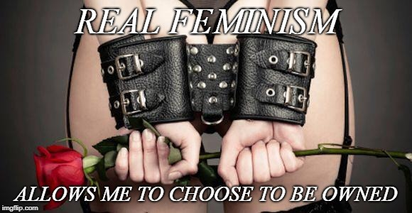 REAL FEMINISM ALLOWS ME TO CHOOSE TO BE OWNED | image tagged in bdsm | made w/ Imgflip meme maker