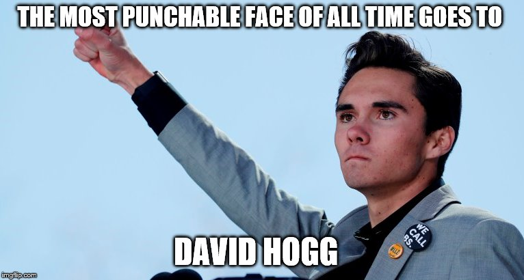 1984 | THE MOST PUNCHABLE FACE OF ALL TIME GOES TO DAVID HOGG | image tagged in david hogg,2nd amendment | made w/ Imgflip meme maker