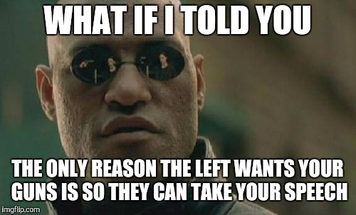 Matrix Morpheus Meme | WHAT IF I TOLD YOU THE ONLY REASON THE LEFT WANTS YOUR GUNS IS SO THEY CAN TAKE YOUR SPEECH | image tagged in memes,matrix morpheus,2nd amendment,1st amendment | made w/ Imgflip meme maker