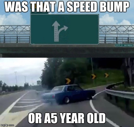 Left Exit 12 Off Ramp Meme | WAS THAT A SPEED BUMP OR A5 YEAR OLD | image tagged in memes,left exit 12 off ramp | made w/ Imgflip meme maker