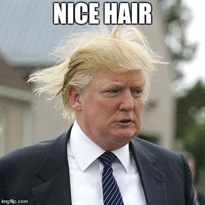 Donald Trump | NICE HAIR | image tagged in donald trump | made w/ Imgflip meme maker