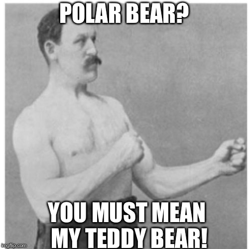 Overly Manly Man Meme | POLAR BEAR? YOU MUST MEAN MY TEDDY BEAR! | image tagged in memes,overly manly man | made w/ Imgflip meme maker