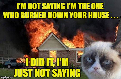 Burn Kitty | I'M NOT SAYING I'M THE ONE WHO BURNED DOWN YOUR HOUSE . . . I DID IT, I'M JUST NOT SAYING | image tagged in memes,burn kitty,grumpy cat | made w/ Imgflip meme maker