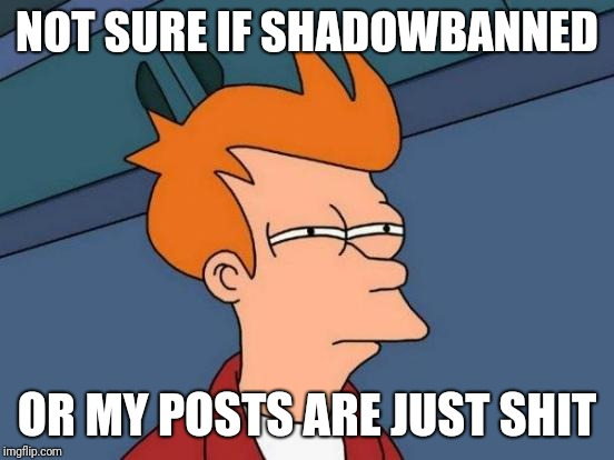 That's how I feel on most social media... not imgflip of course! | NOT SURE IF SHADOWBANNED OR MY POSTS ARE JUST SHIT | image tagged in memes,futurama fry,shadowban,shitty meme,posts,social media | made w/ Imgflip meme maker