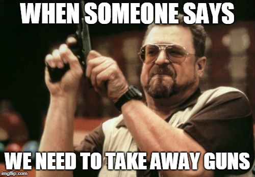 Am I The Only One Around Here Meme | WHEN SOMEONE SAYS WE NEED TO TAKE AWAY GUNS | image tagged in memes,am i the only one around here | made w/ Imgflip meme maker