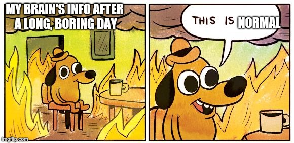 This is fine dog | MY BRAIN'S INFO AFTER A LONG, BORING DAY NORMAL | image tagged in this is fine dog | made w/ Imgflip meme maker