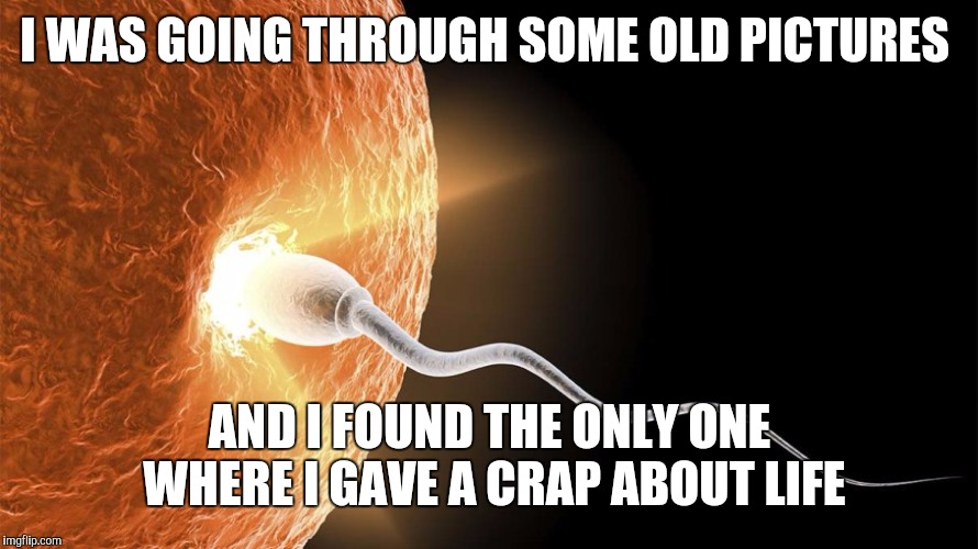 Last time i gave a crap | I WAS GOING THROUGH SOME OLD PICTURES AND I FOUND THE ONLY ONE WHERE I GAVE A CRAP ABOUT LIFE | image tagged in sperm and egg | made w/ Imgflip meme maker