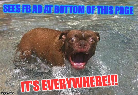 SEES FB AD AT BOTTOM OF THIS PAGE IT'S EVERYWHERE!!! | made w/ Imgflip meme maker