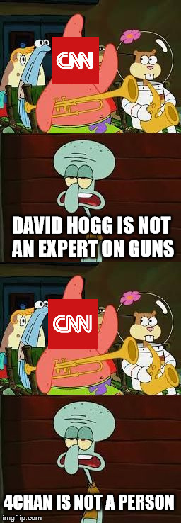 DAVID HOGG IS NOT AN EXPERT ON GUNS 4CHAN IS NOT A PERSON | image tagged in is mayonnaise an instrument,cnn,david hogg,4chan | made w/ Imgflip meme maker