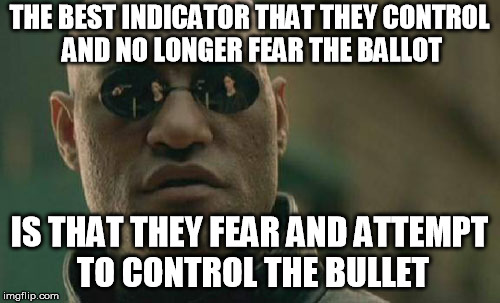 You can still follow the movement of the invisible in the grass | THE BEST INDICATOR THAT THEY CONTROL AND NO LONGER FEAR THE BALLOT IS THAT THEY FEAR AND ATTEMPT TO CONTROL THE BULLET | image tagged in memes,matrix morpheus,gun control,police state,voting | made w/ Imgflip meme maker