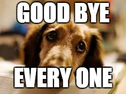 GOOD BYE EVERY ONE | image tagged in cute dog | made w/ Imgflip meme maker