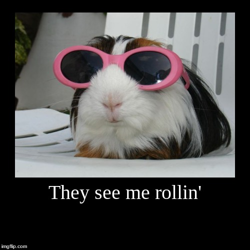 They see me rollin' | | image tagged in funny,demotivationals | made w/ Imgflip demotivational maker