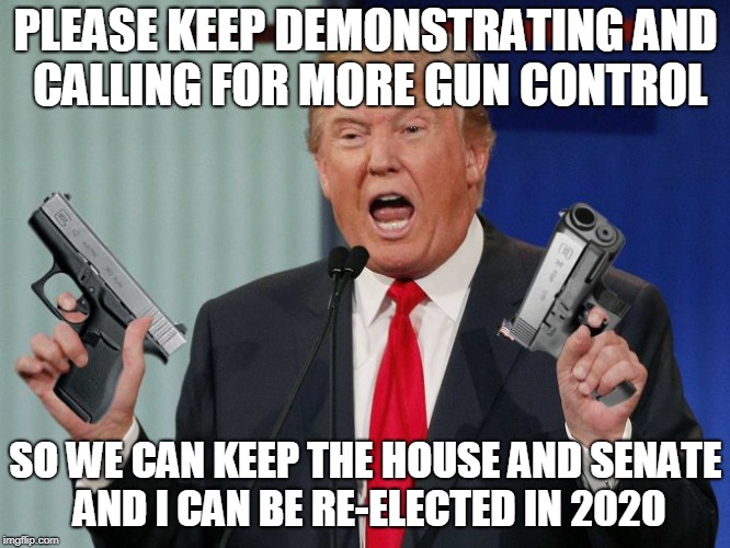 Please, Please, Please  | PLEASE KEEP DEMONSTRATING AND CALLING FOR MORE GUN CONTROL SO WE CAN KEEP THE HOUSE AND SENATE AND I CAN BE RE-ELECTED IN 2020 | image tagged in gun trump,gun control,march for our lives,second amendment,2020,memes | made w/ Imgflip meme maker