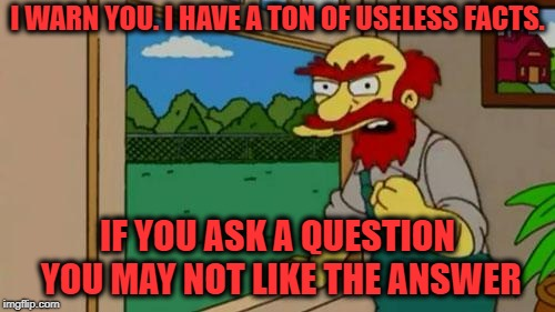 Angry Groundskeeper Willy  | I WARN YOU. I HAVE A TON OF USELESS FACTS. IF YOU ASK A QUESTION YOU MAY NOT LIKE THE ANSWER | image tagged in angry groundskeeper willy | made w/ Imgflip meme maker