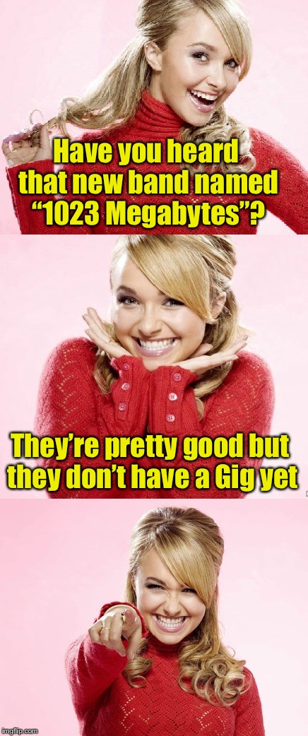 "Techno Pun | Have you heard that new band named ""1023 Megabytes""? They're pretty good but they don't have a Gig yet 