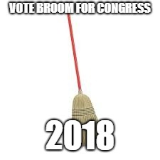 Broom4Congress | VOTE BROOM FOR CONGRESS 2018 | image tagged in broom | made w/ Imgflip meme maker