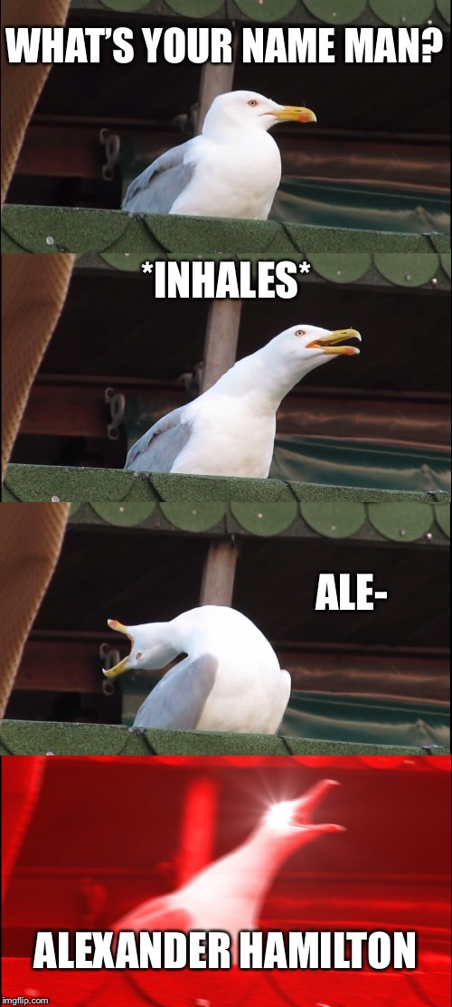 Inhaling Seagull Meme | WHAT'S YOUR NAME MAN? *INHALES* ALE- ALEXANDER HAMILTON | image tagged in memes,inhaling seagull | made w/ Imgflip meme maker