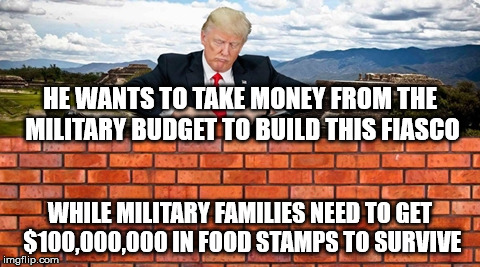HE WANTS TO TAKE MONEY FROM THE MILITARY BUDGET TO BUILD THIS FIASCO WHILE MILITARY FAMILIES NEED TO GET $100,000,000 IN FOOD STAMPS TO SURV | image tagged in trump wall | made w/ Imgflip meme maker