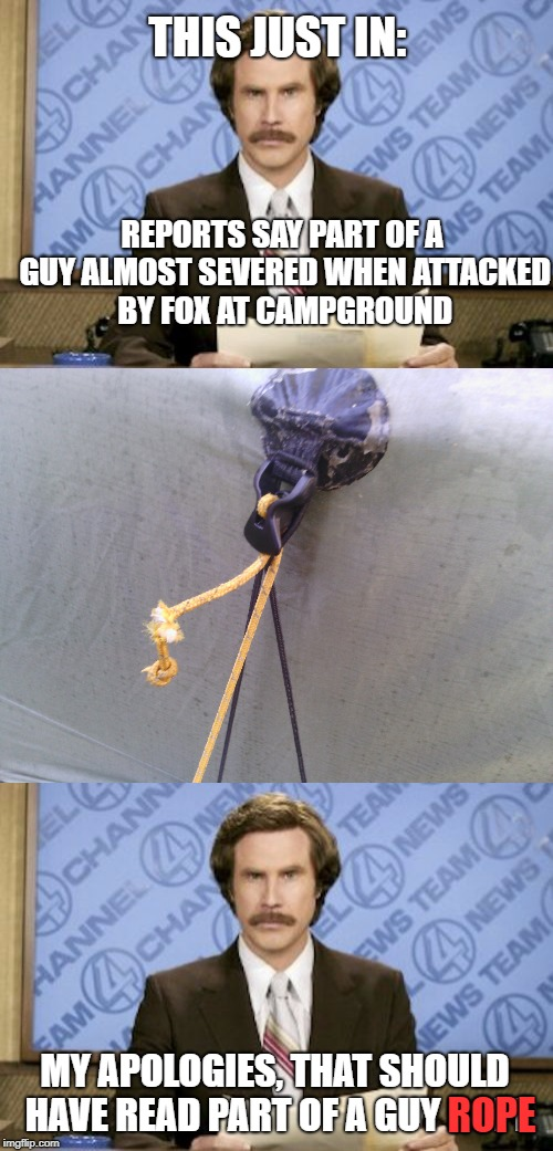 Discretion advised, image may be upsetting to some viewers. | REPORTS SAY PART OF A GUY ALMOST SEVERED WHEN ATTACKED BY FOX AT CAMPGROUND MY APOLOGIES, THAT SHOULD HAVE READ PART OF A GUY ROPE ROPE THIS | image tagged in ron burgundy,camping,attack,animals to humans | made w/ Imgflip meme maker