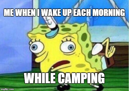 I'm getting too old for this... | ME WHEN I WAKE UP EACH MORNING WHILE CAMPING | image tagged in memes,mocking spongebob,camping | made w/ Imgflip meme maker