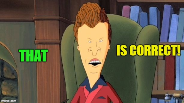 butthead | THAT IS CORRECT! | image tagged in butthead | made w/ Imgflip meme maker