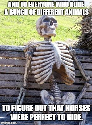 Waiting Skeleton Meme | AND TO EVERYONE WHO RODE A BUNCH OF DIFFERENT ANIMALS TO FIGURE OUT THAT HORSES WERE PERFECT TO RIDE. | image tagged in memes,waiting skeleton | made w/ Imgflip meme maker