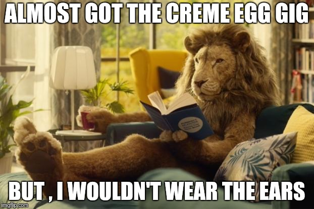 Lion relaxing | ALMOST GOT THE CREME EGG GIG BUT , I WOULDN'T WEAR THE EARS | image tagged in lion relaxing | made w/ Imgflip meme maker