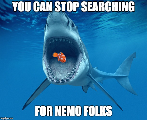 In Search of Nemo | YOU CAN STOP SEARCHING FOR NEMO FOLKS | image tagged in nemo,search | made w/ Imgflip meme maker
