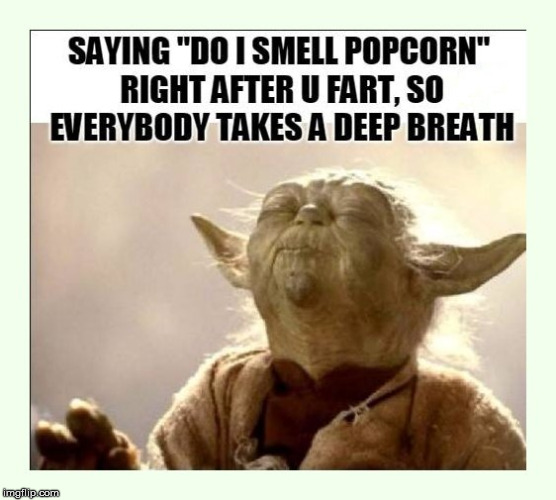 Are you a smart fellow or a fart smeller? | image tagged in yoda wisdom,advice yoda,bathroom humor,funny meme,potty humor,fart joke | made w/ Imgflip meme maker