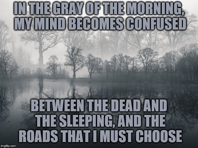 IN THE GRAY OF THE MORNING, MY MIND BECOMES CONFUSED BETWEEN THE DEAD AND THE SLEEPING, AND THE ROADS THAT I MUST CHOOSE | made w/ Imgflip meme maker