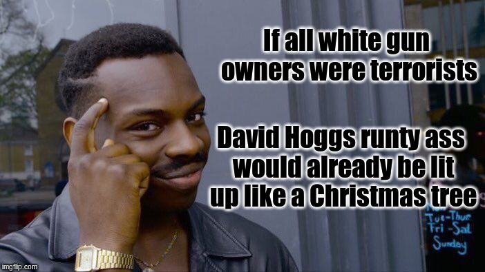 Roll Safe Think About It Meme | If all white gun owners were terrorists David Hoggs runty ass would already be lit up like a Christmas tree | image tagged in memes,roll safe think about it | made w/ Imgflip meme maker