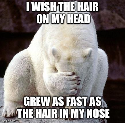 I'm not even that old... | I WISH THE HAIR ON MY HEAD GREW AS FAST AS THE HAIR IN MY NOSE | image tagged in shame,getting old | made w/ Imgflip meme maker