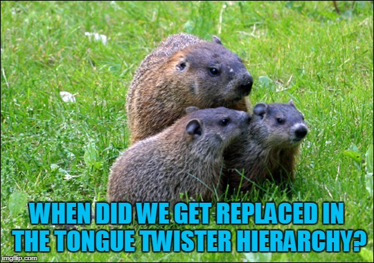 WHEN DID WE GET REPLACED IN THE TONGUE TWISTER HIERARCHY? | made w/ Imgflip meme maker