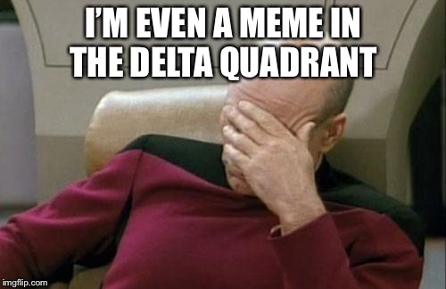 Captain Picard Facepalm Meme | I'M EVEN A MEME IN THE DELTA QUADRANT | image tagged in memes,captain picard facepalm | made w/ Imgflip meme maker